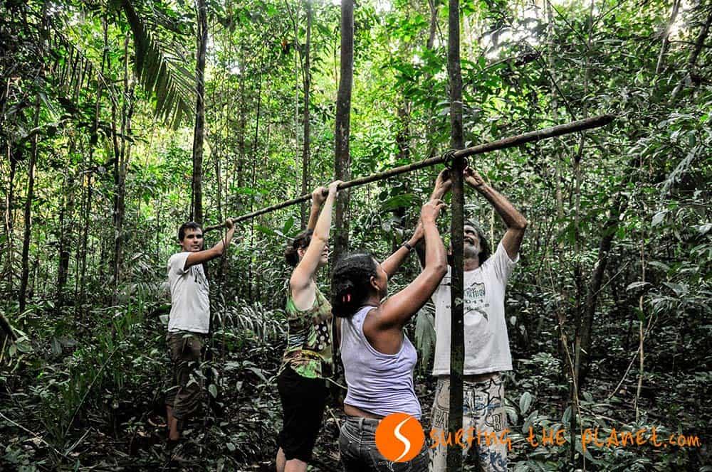 Buliding a jungle shelter