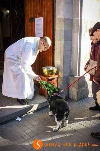 Dog Blessing in Sant Antoni Day
