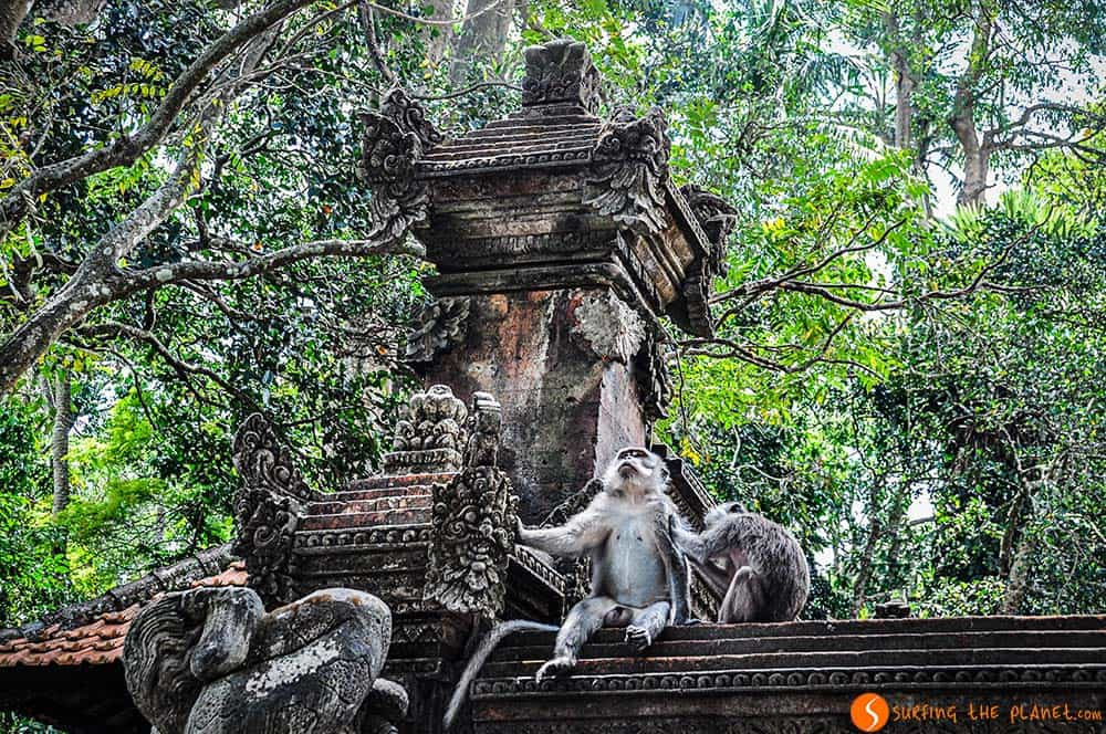 Bali Temples - Sacred Monkey Forest Santuary