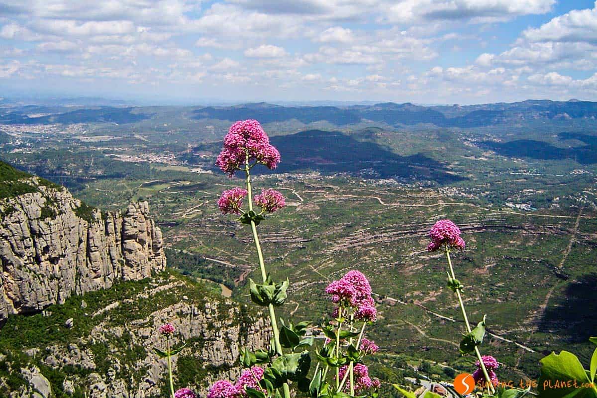 Cosa fare a Barcellona| Escursione a Montserrat