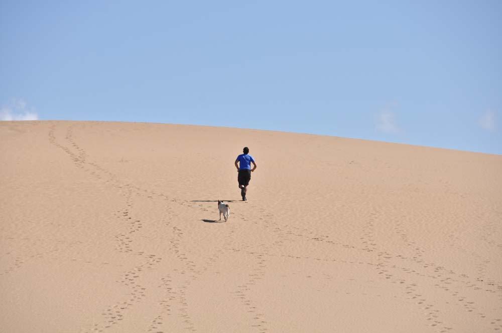 Desierto Uruguayo