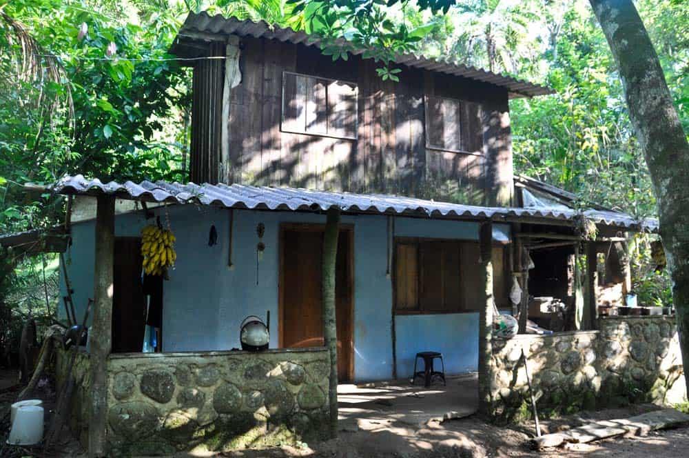 Ház az őserdő mélyén Paratyban