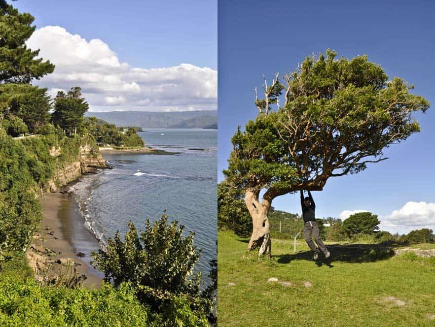 Qué hacer en Pucón y Valdivia - Los lagos de Chile | Viajar a Chile