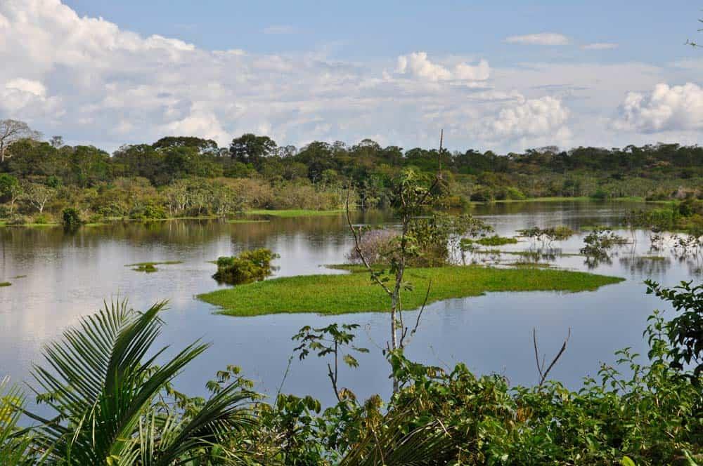 Paesaggio in Amazzonia