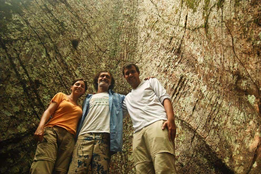 Hatalmas fenyő törzsénél, Tapajós Nemzeti Park