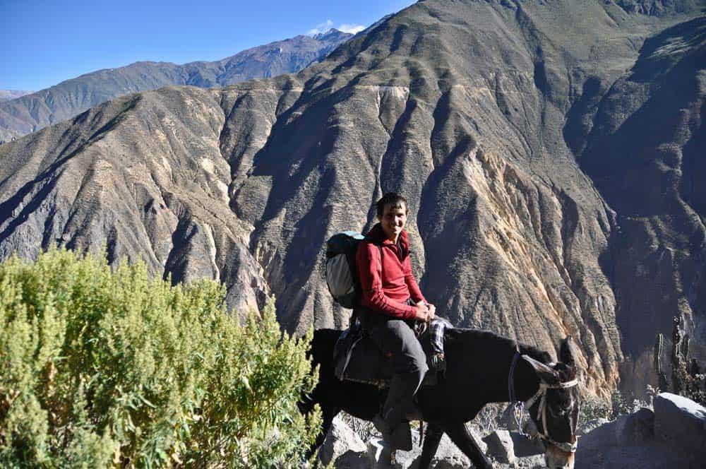 Szamárháton a Colca-kanyonban