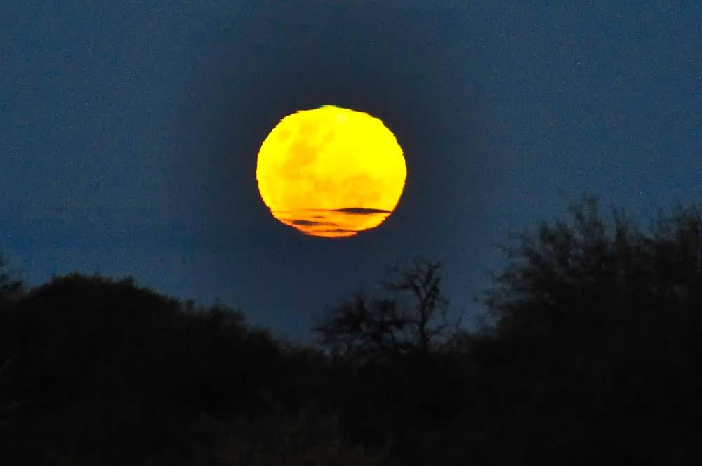 Luna llena, Valle de la Luna, San Juan | Viaje a Argentina