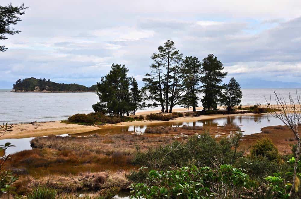costa del parco naturale , Abel Tasman | Viaggio in Nuova Zelanda