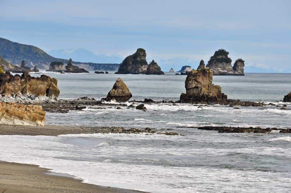 costa nezelandésa