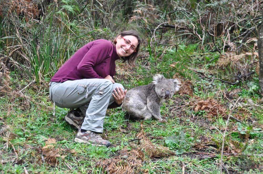 Koala & Rachele