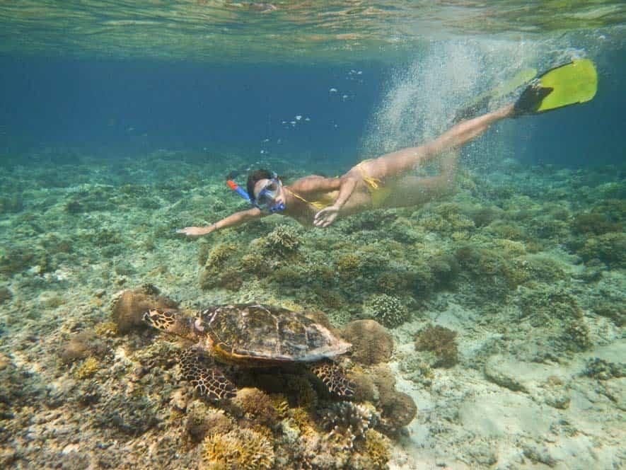 Nuotando con una tartaruga marina a Gilli Meno | Viaggio Indonesia