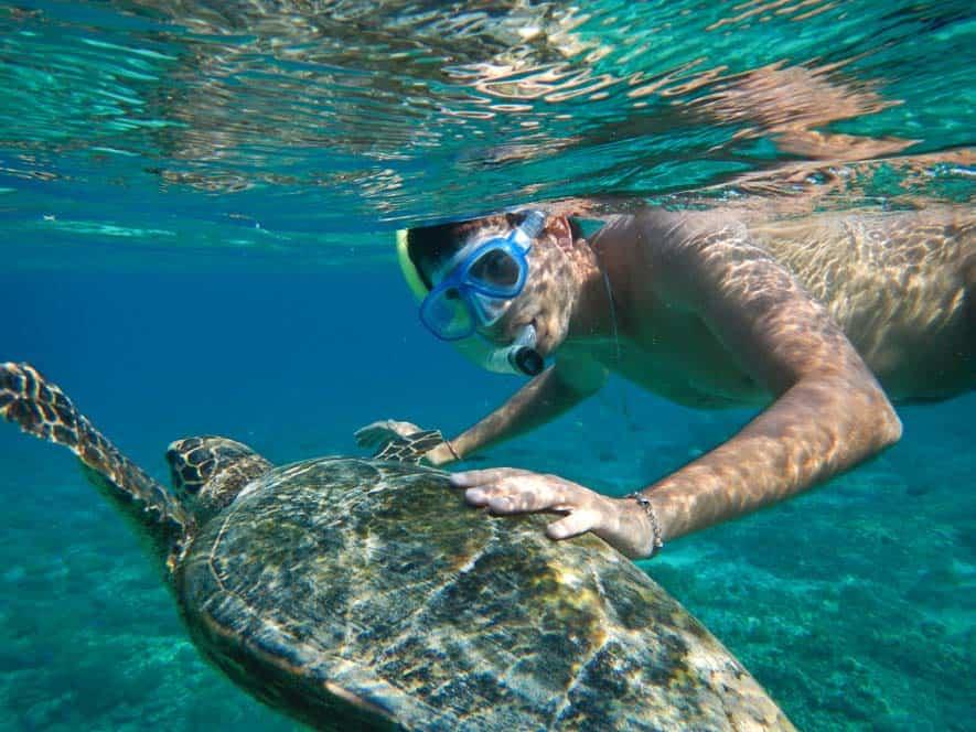 Gábor nuotando con una tartaruga marina a Gilli Meno | Viaggio Indonesia