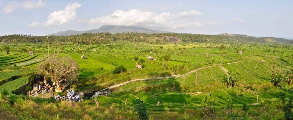 Risaie nei dintorni di Padang Bai a Bali | Viaggio Indonesia