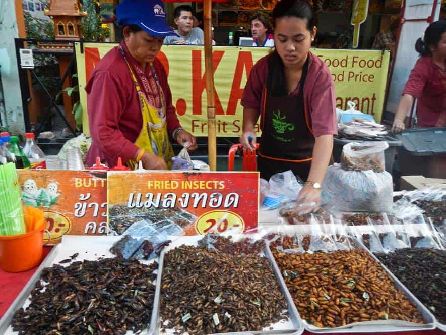 Insectos fritos, Chiang Mai, Tailandia