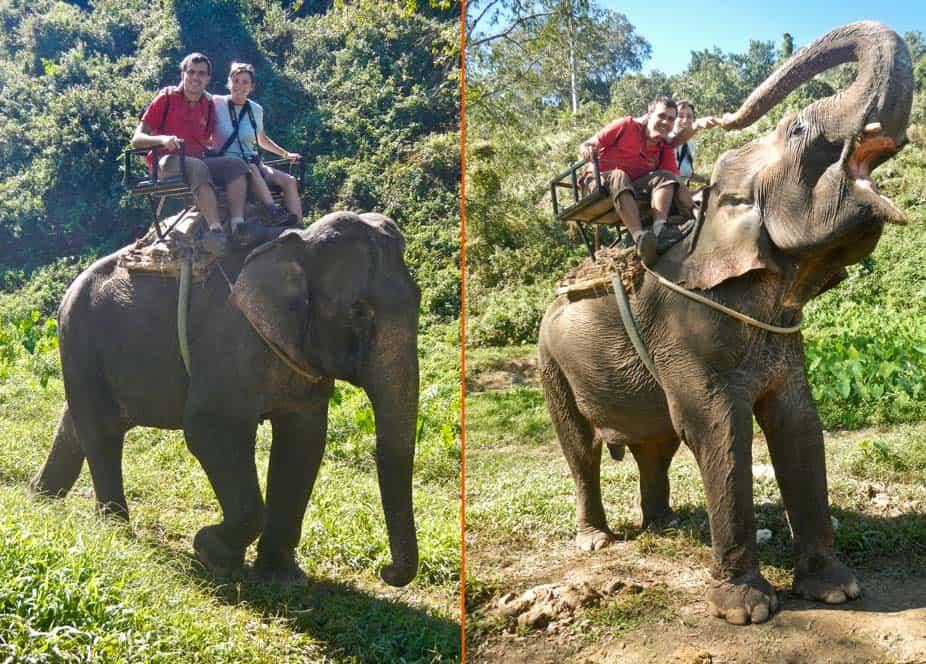 paseo en elefante