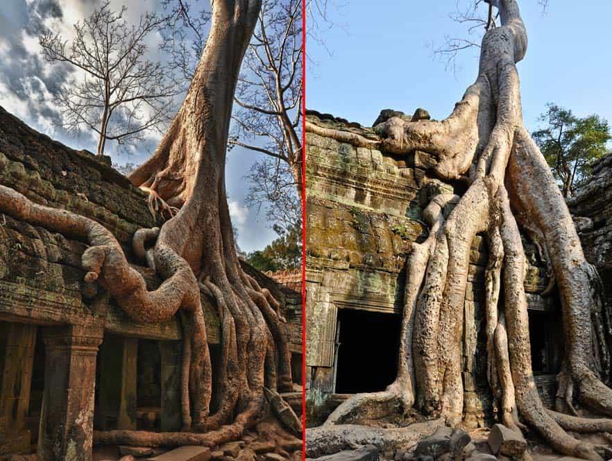 Ta Prohm templo Angkor Wat, Camboya