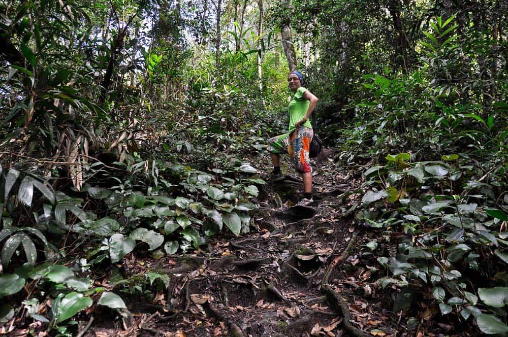 Trekking Cameron Highlands | Viaggio in Malesia