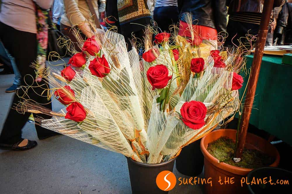 Rose rosse di San Giorgio