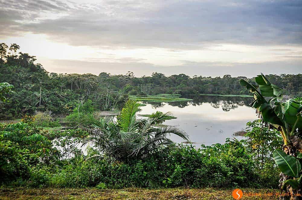 Bonito lago en el Amazonas