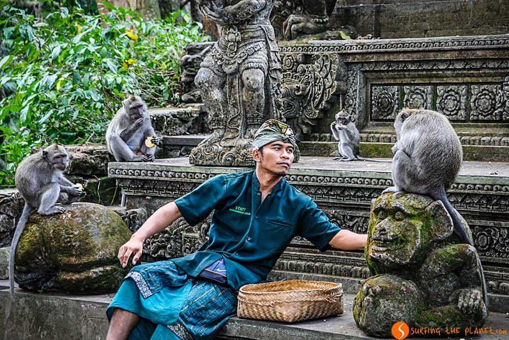 Padangtegal Mandala Wisata Wanara Wana - Monos en el templo de los monos