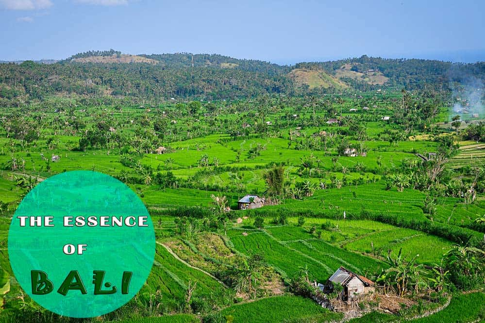 Cosa vedere a Bali - l'essenza di Bali
