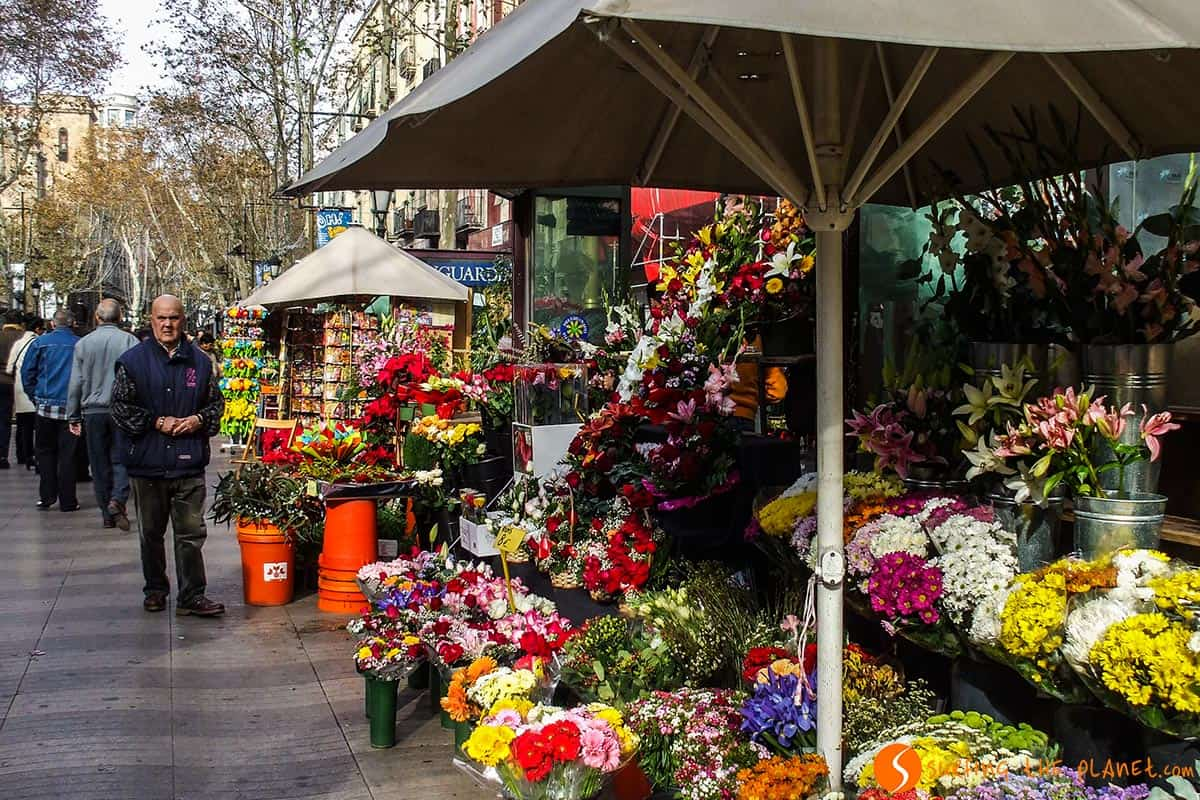 What to see in Barcelona | Las Ramblas