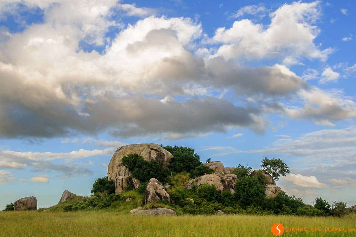 Lion rock in Serengeti National Park | Visiting Tanzania