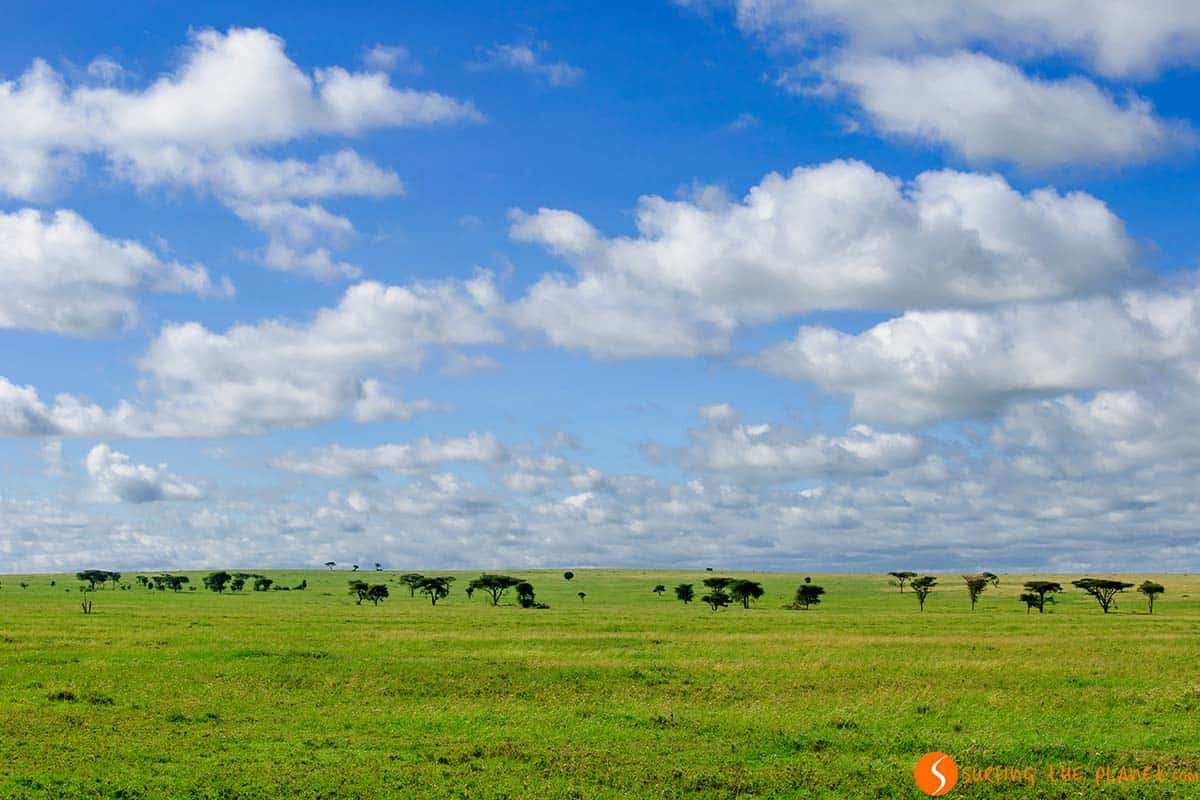 Serengeti National Park | Travel Tanzania