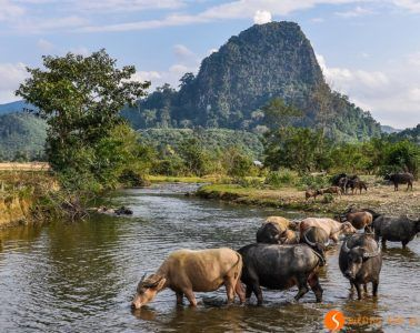 Paisaje rural, Muang Ngoi, Laos