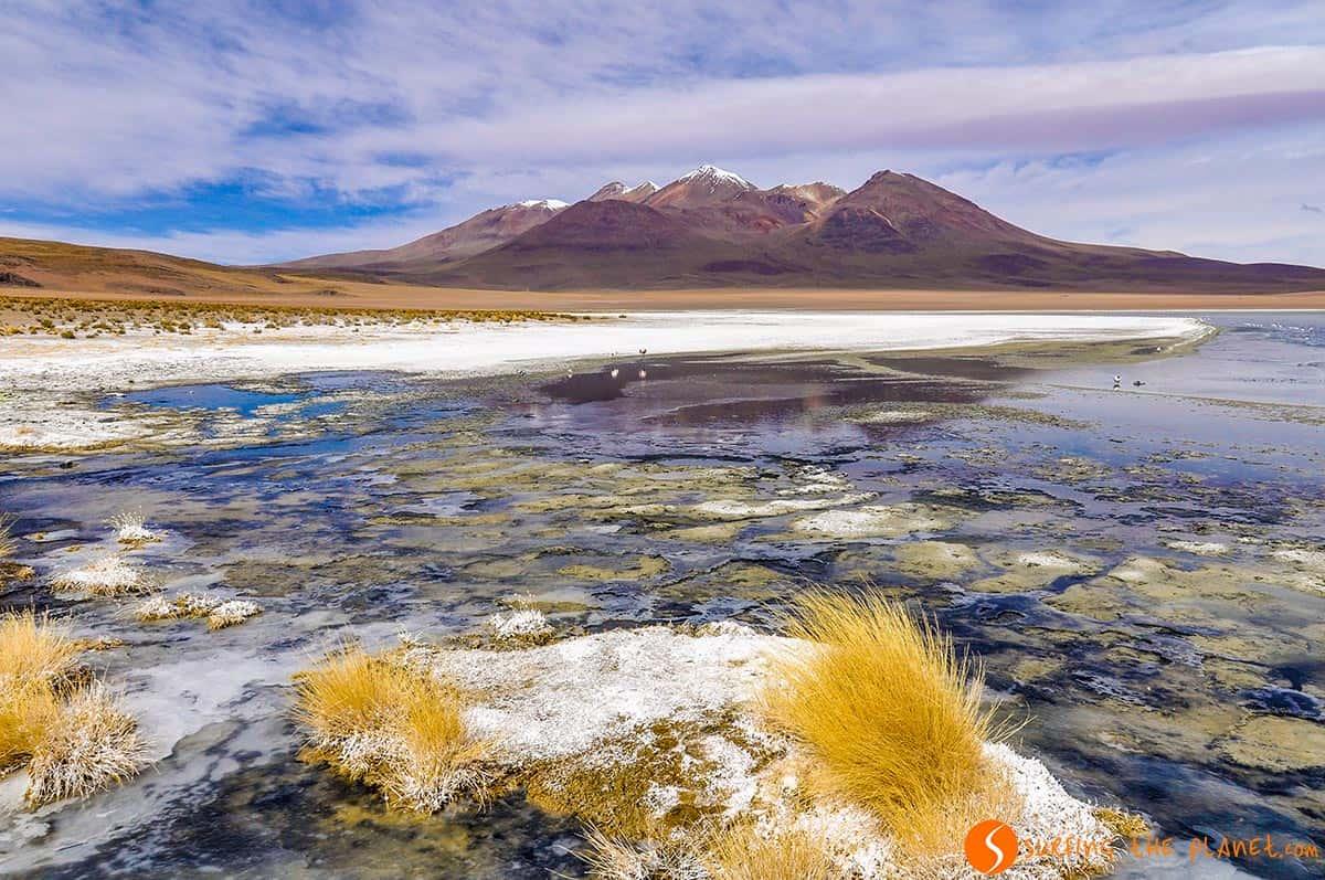 Laguna Colorada, Reserva Nacional Eduardo Avaroa, Bolivia