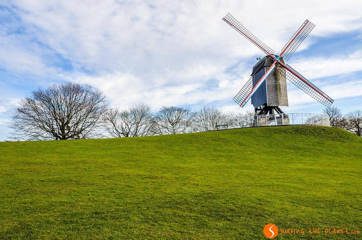 Mulino a vento, Bruges, Belgio
