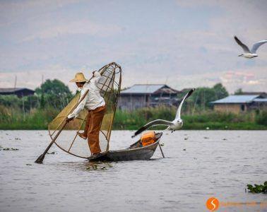 Pescador, Inle Lake, Myanmar