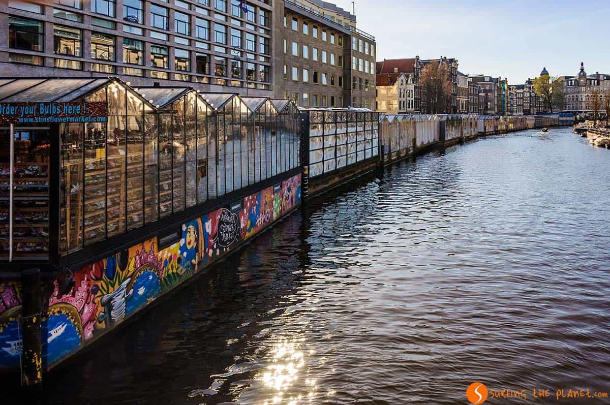 Mercado de las flores, Amsterdam, Holanda | Lugares de interés imprescindibles que visitar en Amsterdam