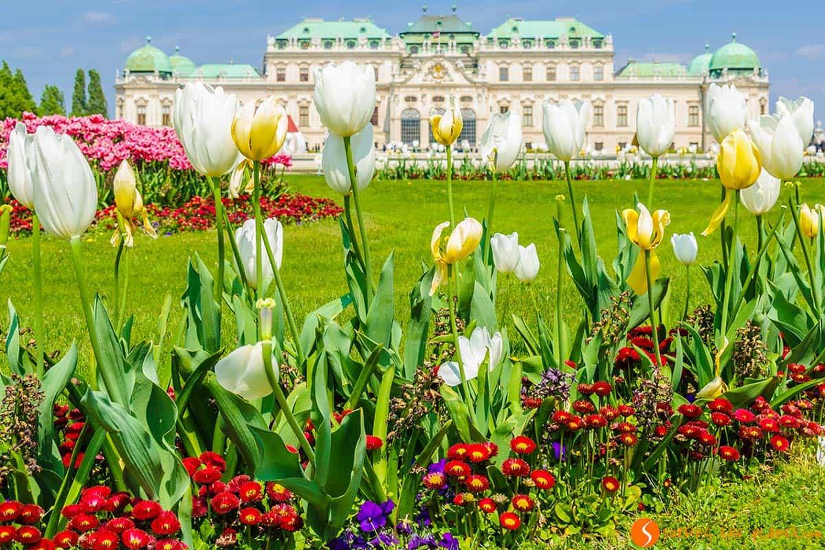 Palacio Belvedere, Viena, Austria