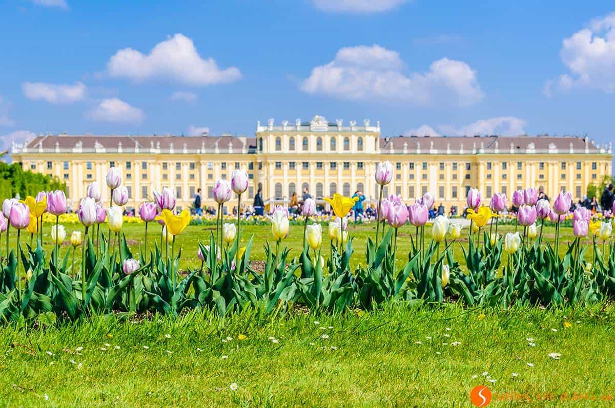Castello Schonbrunn, Vienna, Austria