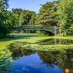 Los parques más bonitos de Nueva York – 30 oasis en la Gran Manzana