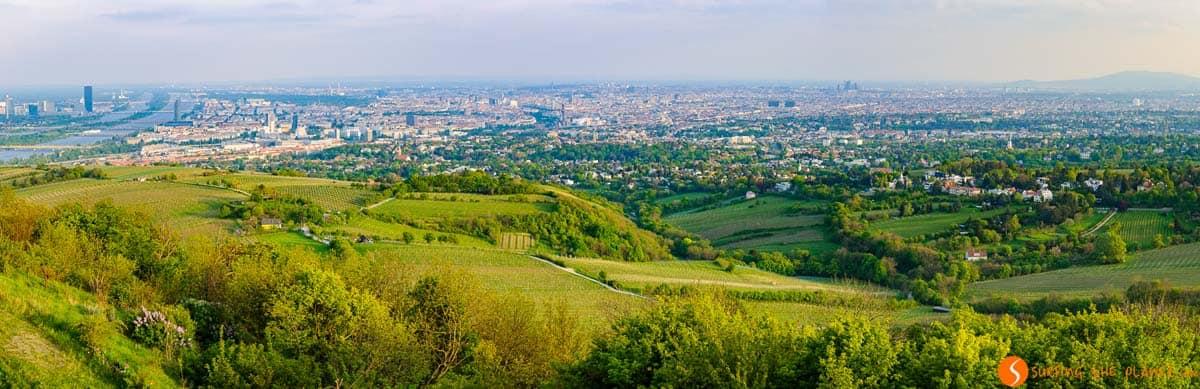 Vienna in tre giorni | Panorama da Kahlenberg, Vienna, Austria