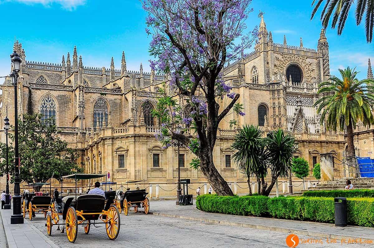 La Catedral, Sevilla, España | Qué ver en Sevilla en dos días