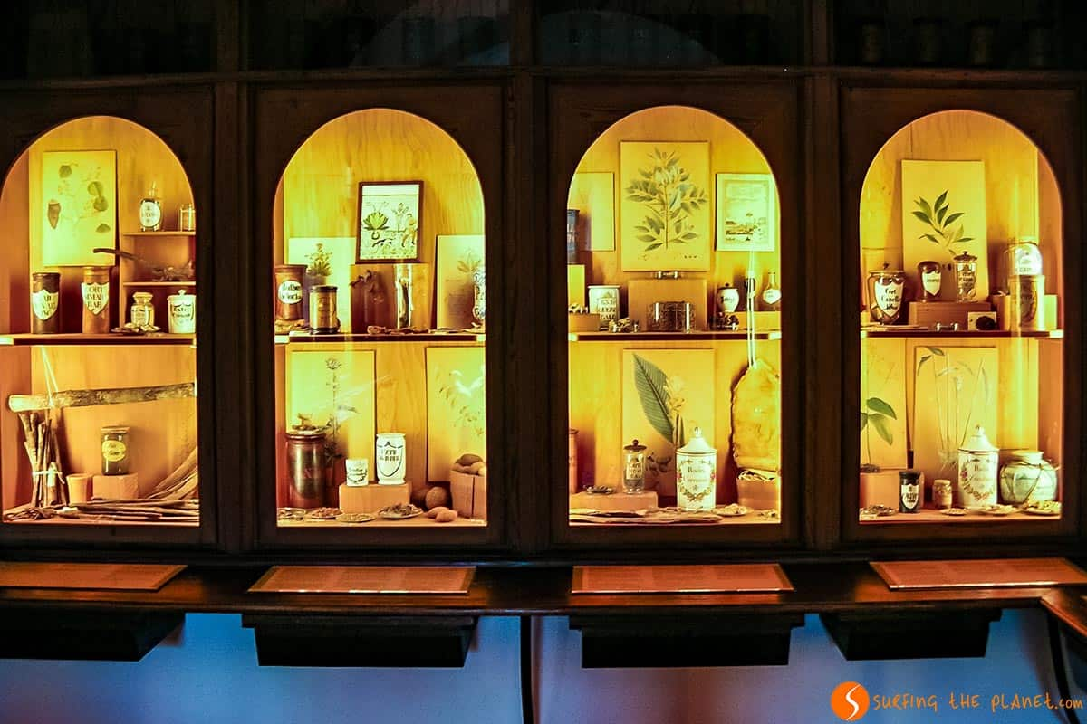 Pharmacy Museum, Heidelberg, Germany | What to see in Germany