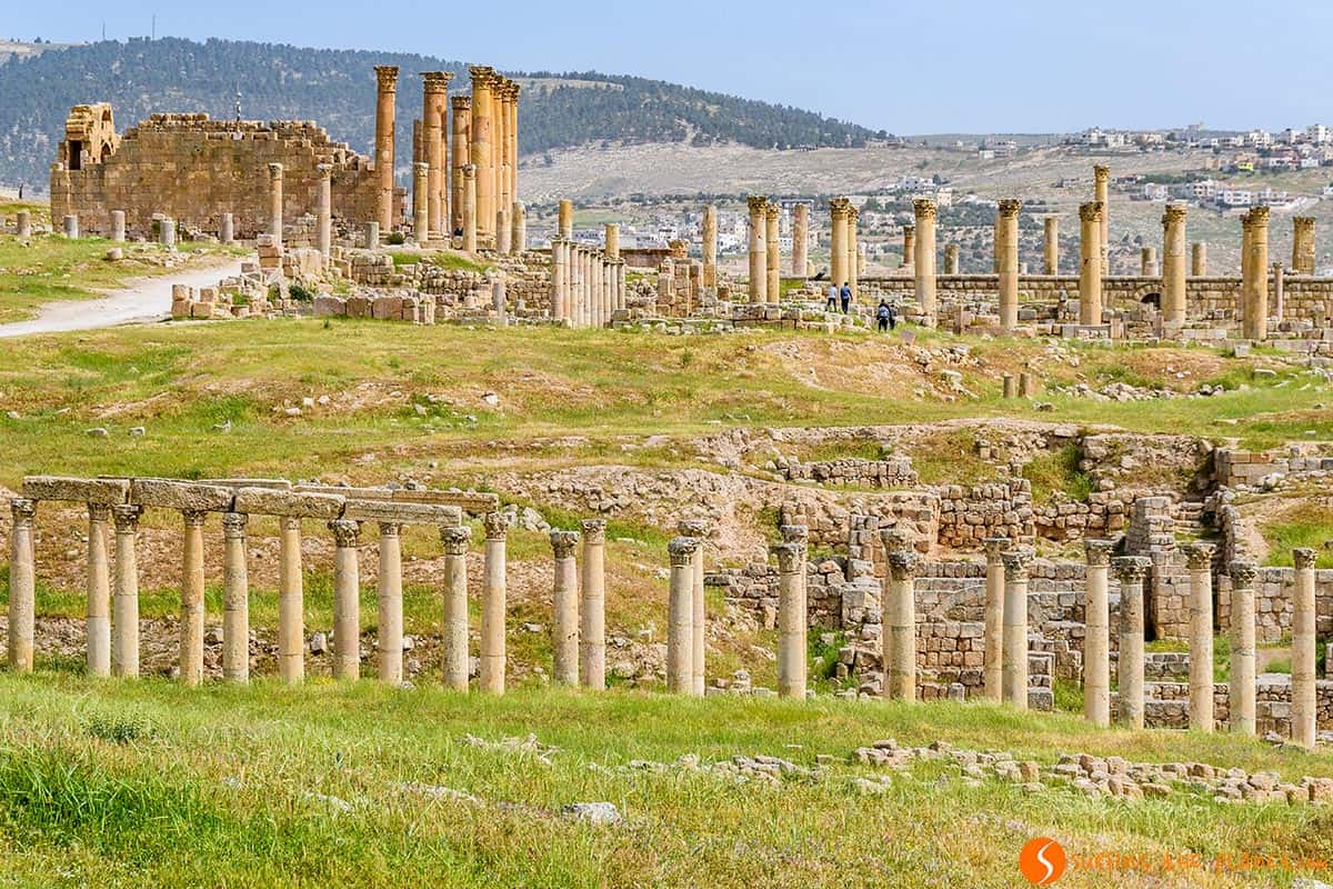 Vista panorámica, Jerash, Jordania | Excursión a Jerash, Ajloun y Mar Muerto