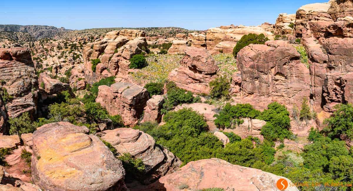 Mirador, Reserva de la Biosfera de Dana, Jordania