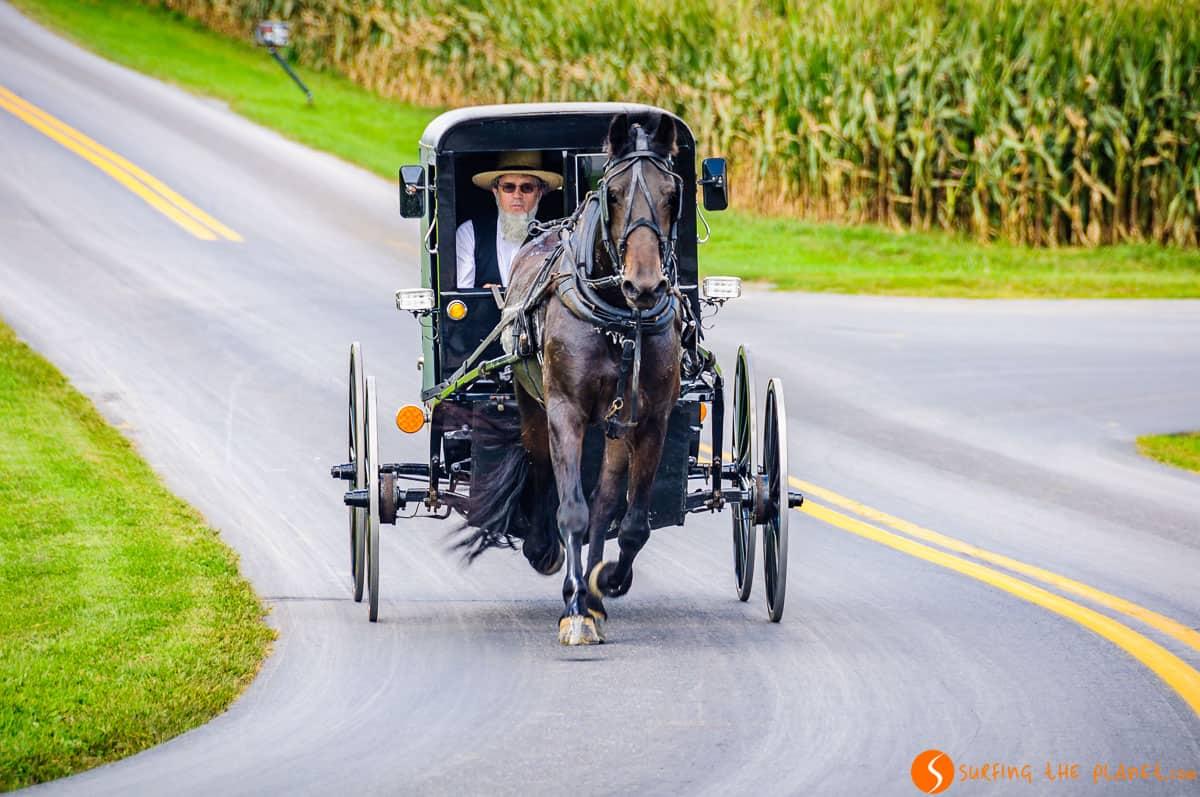 Hombre Amish en Carro Negro, Pensilvania |Qué ver en la Costa Este de Estados Unidos