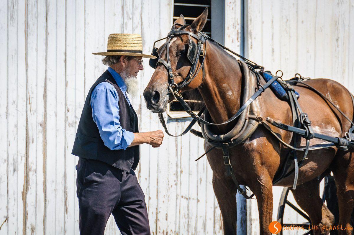 Hombre con el caballo, Comunidad Amish de Lancaster, Pennsylvania, Estados Unidos