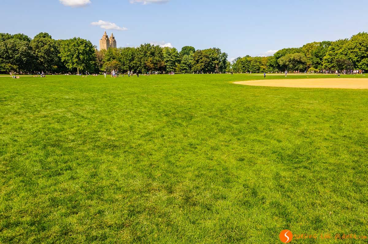Great Lawn, Central Park, Nueva York, Estados Unidos