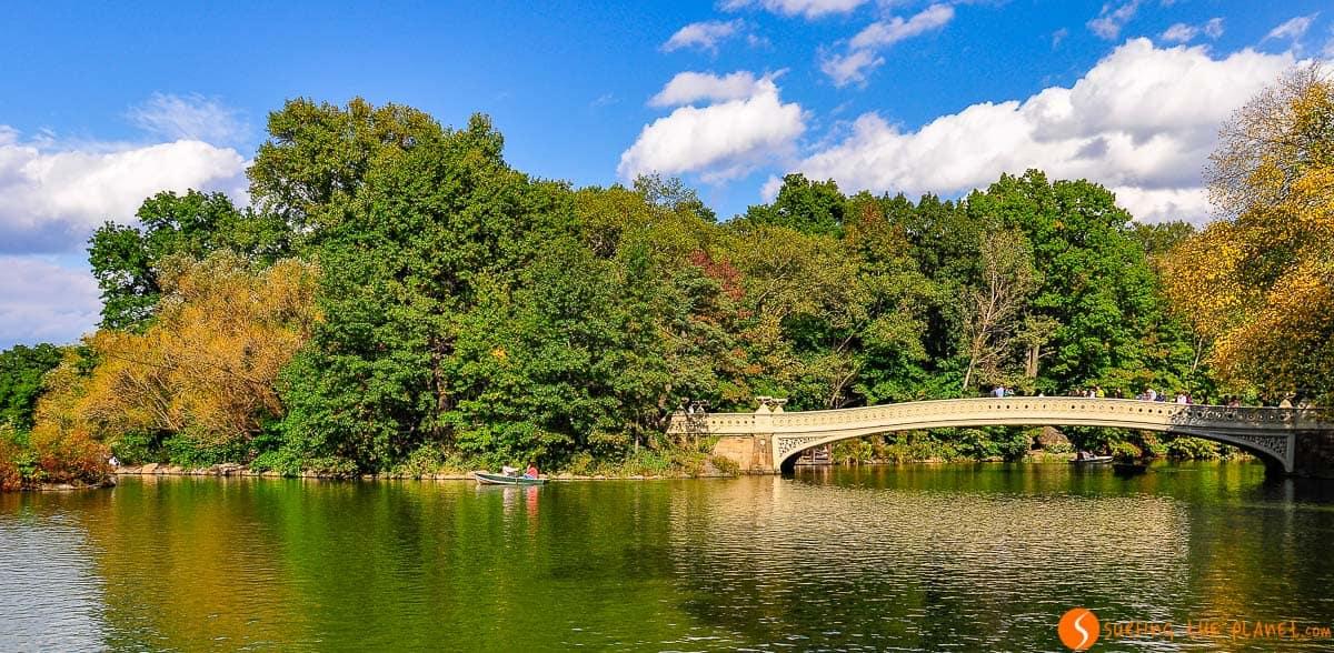 Paisaje de otoño, Central Park, Manhattan, Nueva York, Estados Unidos