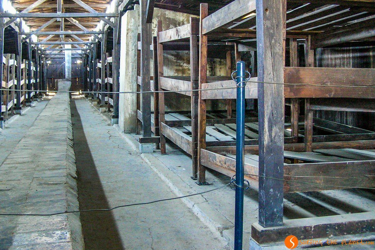 Interior del campo de concentración Auschwitz-Birkenau cerca de Cracovia, Polonia |Excursión a Auscwitz-Birkenau desde Cracovia