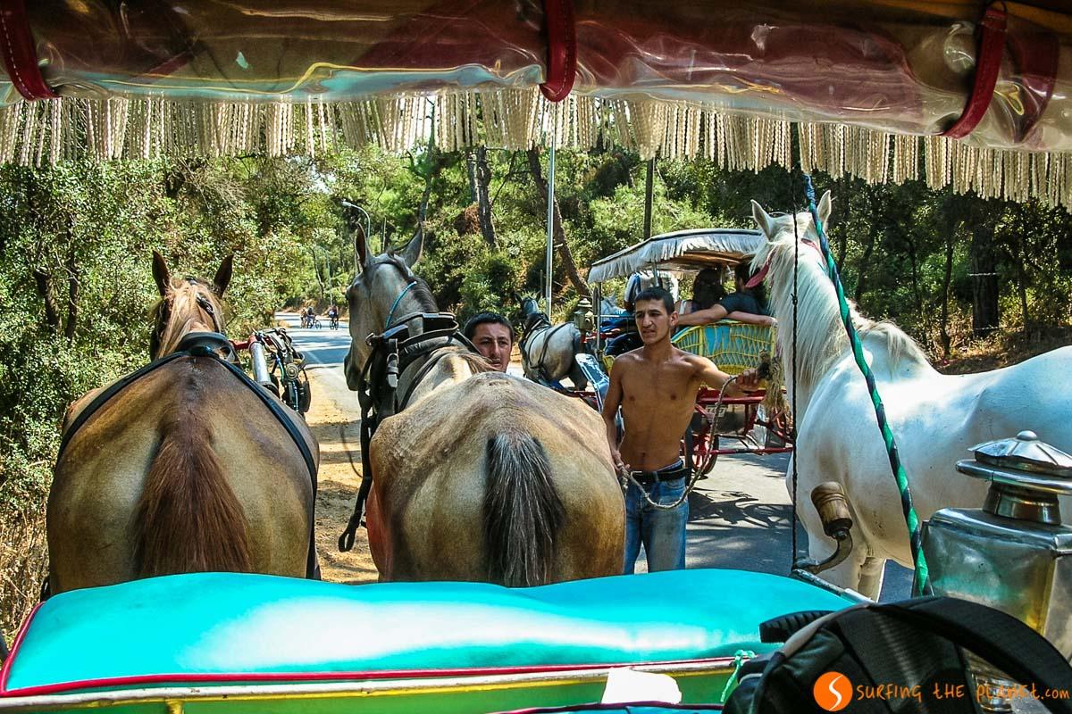 Calesas, Islas del Príncipe, Estambul, Turquía | Qué ver y hacer en los alrededores de Estambul