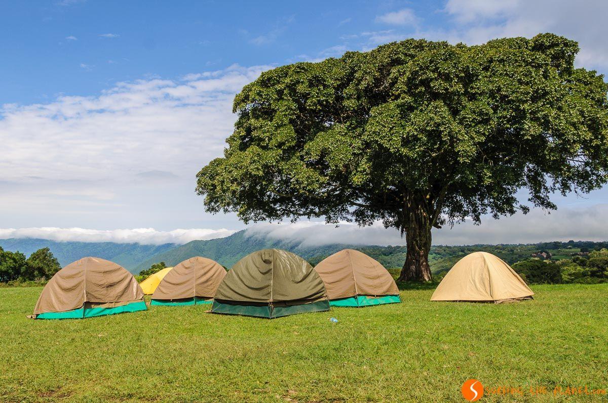 Camping, Área de Conservación de Ngorongoro, Tanzania   Dónde dormir en el Ngorongoro