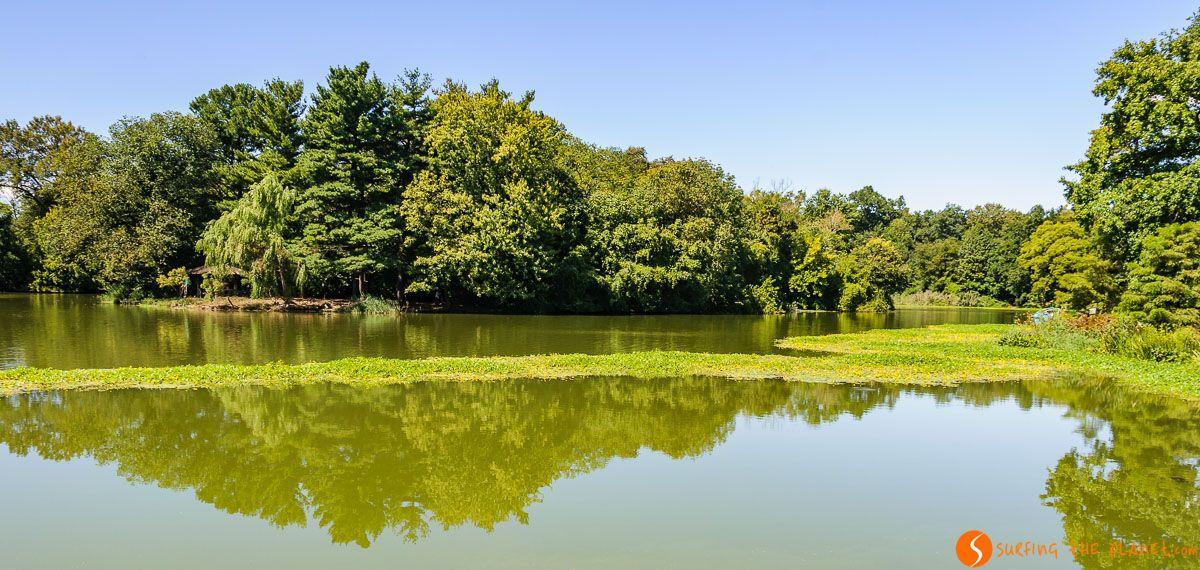 Lago en Prospect Park, Brooklyn, Nueva York | Parques que visitar en Nueva York