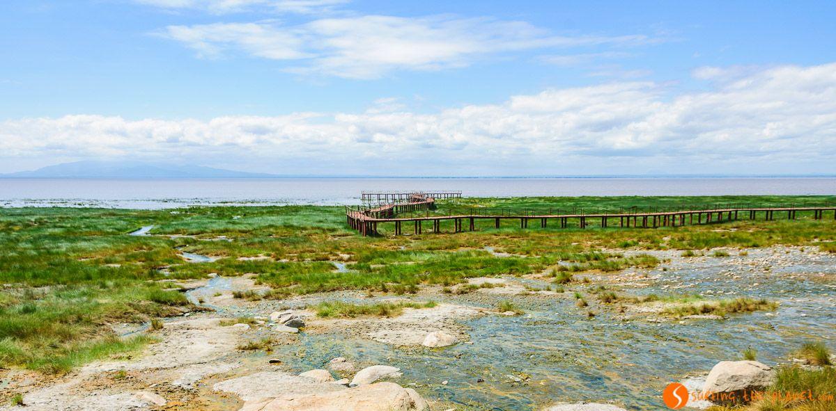 Pasarela de Madera, Lago Manyara, Tanzania